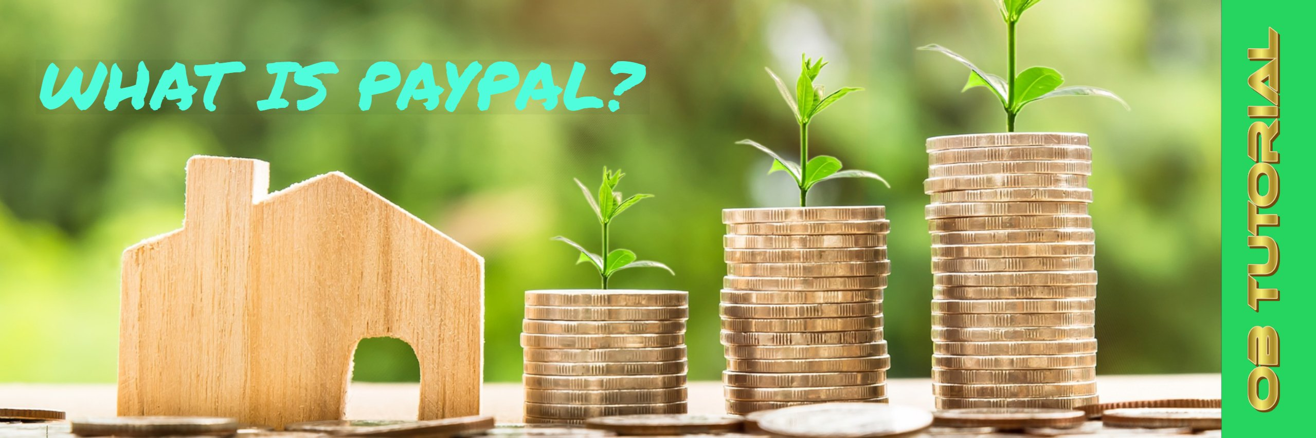 What is paypal.com