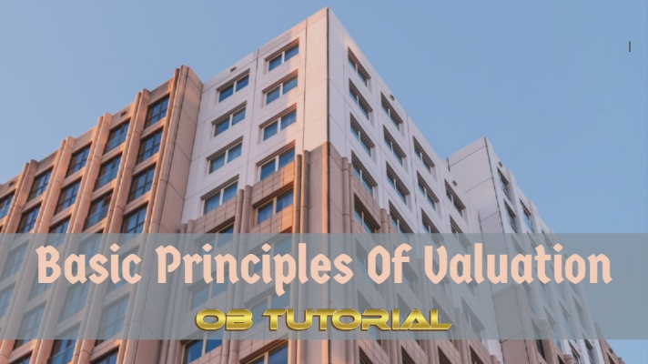 In this article, you will find fundamental business valuation principles that determine the value of a business.